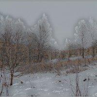 Зима :: Владимир Воробьев