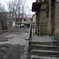 Петербургские дворы :: ник. петрович земцов