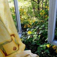 ...окно в лето..... :: Ира Егорова :)))