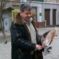 Кормление голубей :: Галина Pavel