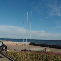 Отдых на Финском Заливе :: Alexandra Sakharova