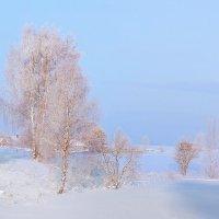Зимняя, морозная... нежность. :: Александр Никитинский