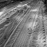 На неведомых дорожках :: Сергей Тарабара