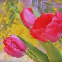Весна пришла :: Juliya Fokina