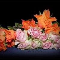 Цветочный :: Лара Dor