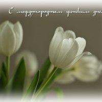С праздником, милые женщины!!! :: Boris Alabugin