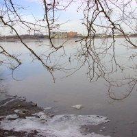 Зима в Вирджинии :: Илья Трейгер