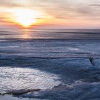 Лед на Финском заливе :: Анатолий Мигов