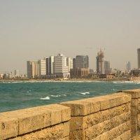 вид на Тель-Авив :: Nelli Lesnovsky