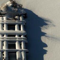 Образ зимы -3! :: Владимир Шошин