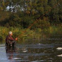 Я на камешке сижу и на поплавок гляжу... :: Виктор Вуколов