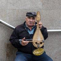 Уличный музыкант :: Елена Миронова