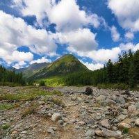 Каменное ложе горной реки :: Виктор Никитин