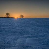 Снежная пустыня :: Валерий Шибаев
