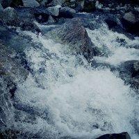 Водная прогулка :: ИРИШКА КАЗАКОВА