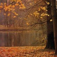 Осень :: Леся Вишня