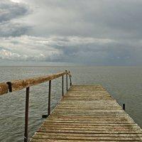 Куршский залив :: Дмитрий Близнюченко
