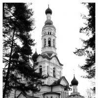 Церковь в Зеленогорске :: Дмитрий Рожков