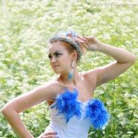 One from beautiful Creations :: Виктор Мушкарин (thepaparazzo)