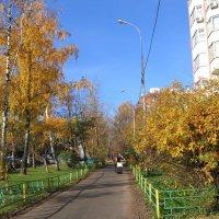 Пейзаж городской обыкновенный :: Владимир  Зотов