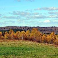 Осень :: Сергей Бурнышев