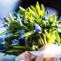 Весенний букет.. :: Павел Свинарев