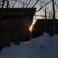 солнце  оно везде :: Арсений Корицкий