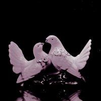 голуби :: Денис Шевчук