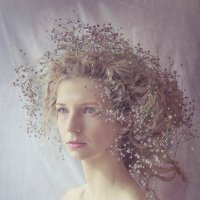 fairy :: Dasha ShaDe