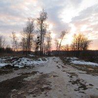 Дорожка в поле :: jenia77 Миронюк Женя