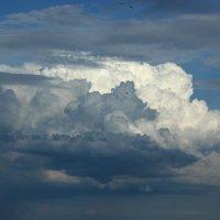 облака 3 :: Олег Петрушин