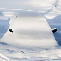 Зимняя маскировка :-)) :: nakip1