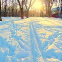 Зимний закат. :: Игорь