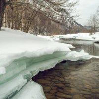 Река Сикася :: Артём Яковлев