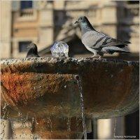 Рим, фонтан на площади перед базиликой Санта Мария Маджоре :: Татьяна Нестерова