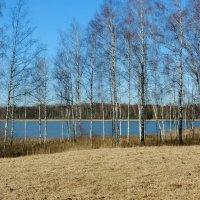 13 марта, озеро (4) :: Юрий Бондер