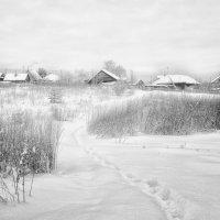 Тропинка к дому... :: Александр Никитинский
