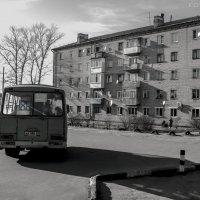 Чёрно-белая весна! :: Павел Данилевский