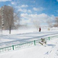 Метель в марте. :: Виталий Mavericks Быков