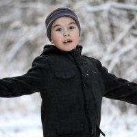 Зима пришла. :: Ирина Светт