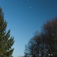 Солнечные стороны двух планет :: Дмитрий Стародубцев