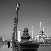Грозный :: Сахаб Шамилов