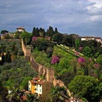 Флоренция весной-2 :: ФотоЛюбка *