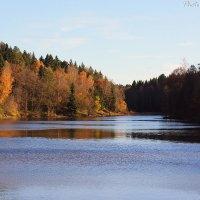 Река Страдаловка (Осень). Autumn river Stradalovka :: Виктор Мушкарин (thepaparazzo)