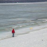парень с собакой :: Арсений Корицкий