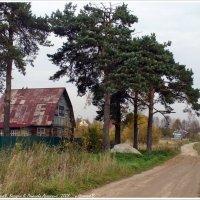Деревня Непейно :: Валерий Викторович РОГАНОВ-АРЫССКИЙ