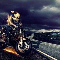 Hell Rider :: Minas Ghazaryan