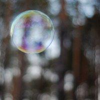мыльный пузырь :: Наталья Ермишина
