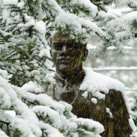 монумент в лесу :: борис зуев