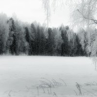 Этюд зимне-весенний... чуть грустный. :: Александр Никитинский